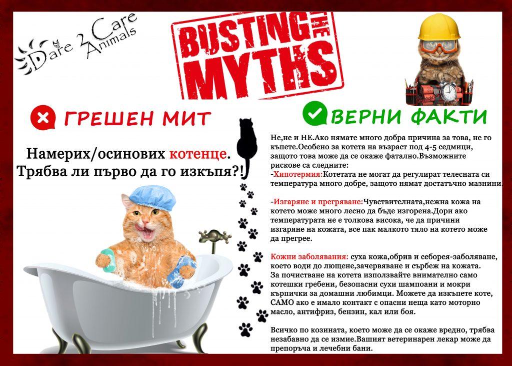Kitten Care - Dont wash kittens