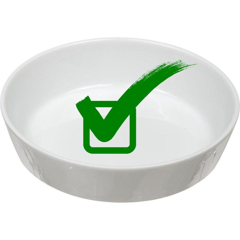 Choosing a cat/ dog bowl